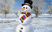 build snowman information