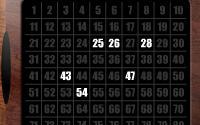 Keno Bingo