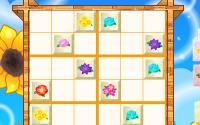 Flower Sudoku information