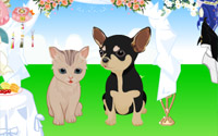 pet-wedding dressup