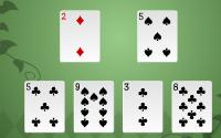 Speed Solitaire information