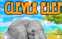 Clever Elephant information