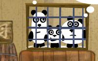 3 Pandas information
