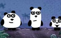 3 Pandas 2 information