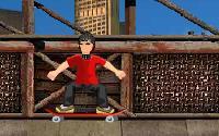 Skate Mania information