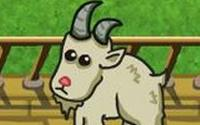 Goat Mechanic information