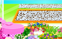 Garden Decoration