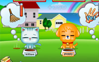 My Cute Pets information